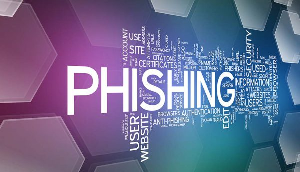 What can organisations do to prevent the rise of phishing attacks?