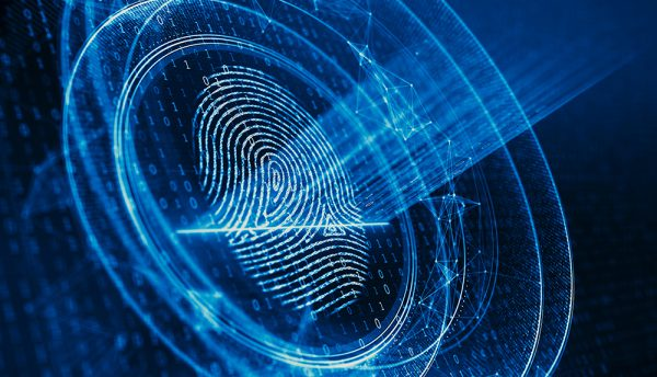 Biometrics has a keen stake in the war on identity fraud – Afiswitch