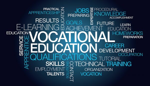 Vocational training a viable alternative to Matric
