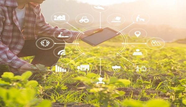 IBM supports African agricultural start-ups through Digital4Agriculture initiative