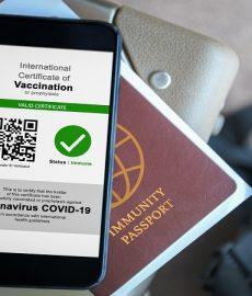 Delta variant fuels black market for fake vaccination certificates