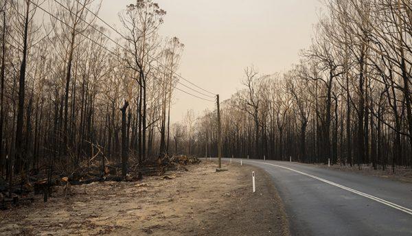 CSIRO and Optus act to mitigate bushfire risks to telecommunications infrastructure
