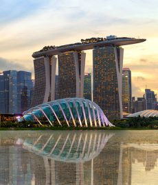 Singapore's farming goes digital with SPTel