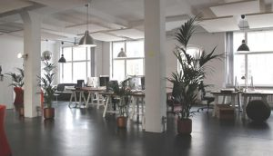 Building an office: 5 IT services you're going to need