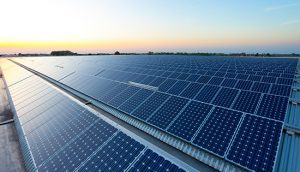 WElink powers ahead with Europe's largest unsubsidised solar project
