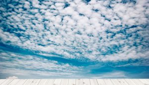 What organisations need to know for a multi-cloud future