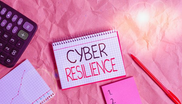 Human skill and expertise considered most important element of cyber-resilience approach