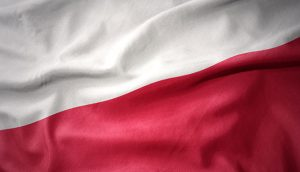 Four hackers arrested in Poland in nation-wide action against cybercrime