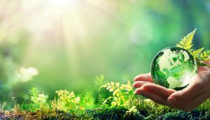 Lenovo ushers in green revolution by offsetting carbon emissions