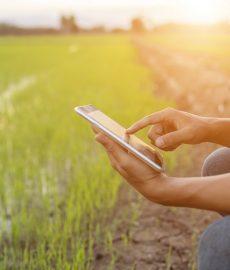 MTC no Peru faz propostas para melhorar a capacitação digital em locais rurais