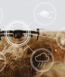 Drones, sensores e IA: Bem-vindo à Quarta Revolução do Agronegócio