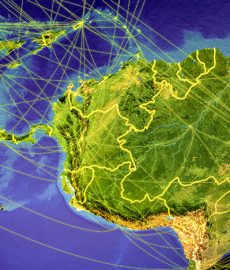 SAP appoints new COO for the South Region of Latin America