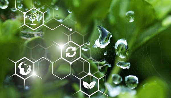 Scala Data Centers invests in sustainability with Furukawa's Green IT Program