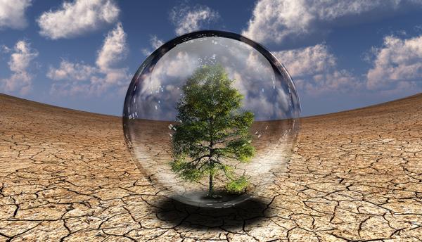 FarEye expert: Helping businesses go green with digital logistics