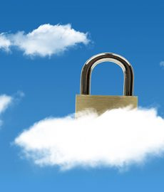 Secure solution allows Pegasus to soar in the cloud
