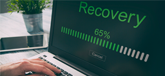 Guaranteed data recovery from a ransomware attack or your money back.