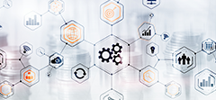 The CIO's Guide to Successful Process Automation