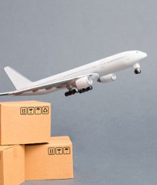New software functionality enables airlines to track individual cargo pieces for first time